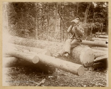 An unidentified man, likely a logger, takes a swig from a jug as he sits on newly cut trees.This image is part of the Thompson Family of Canaan Valley Collection. The Thompson family played a large role in the timber industry of Tucker County during the 1800s, and later prospered in the region as farmers, business owners, and prominent members of the Canaan Valley community.