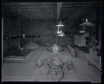 Interior view of a room dedicated to raising and housing poultry.