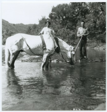 The two unidentified men walk a horse through what is also known as Greenbrier Springs. The springs are located along the Greenbrier River.