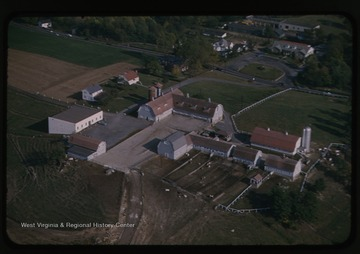 Aerial view of the dairy farm buildings and grounds.