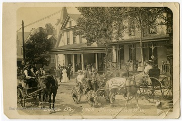 A pony pulls a cart festooned with flowers up a residential street lined with spectators.